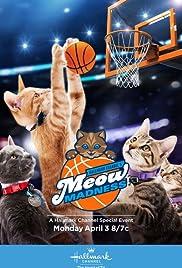 Meow Madness