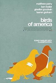 Primary photo for Birds of America