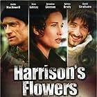 Elias Koteas, Andie MacDowell, and Adrien Brody in Harrison's Flowers (2000)