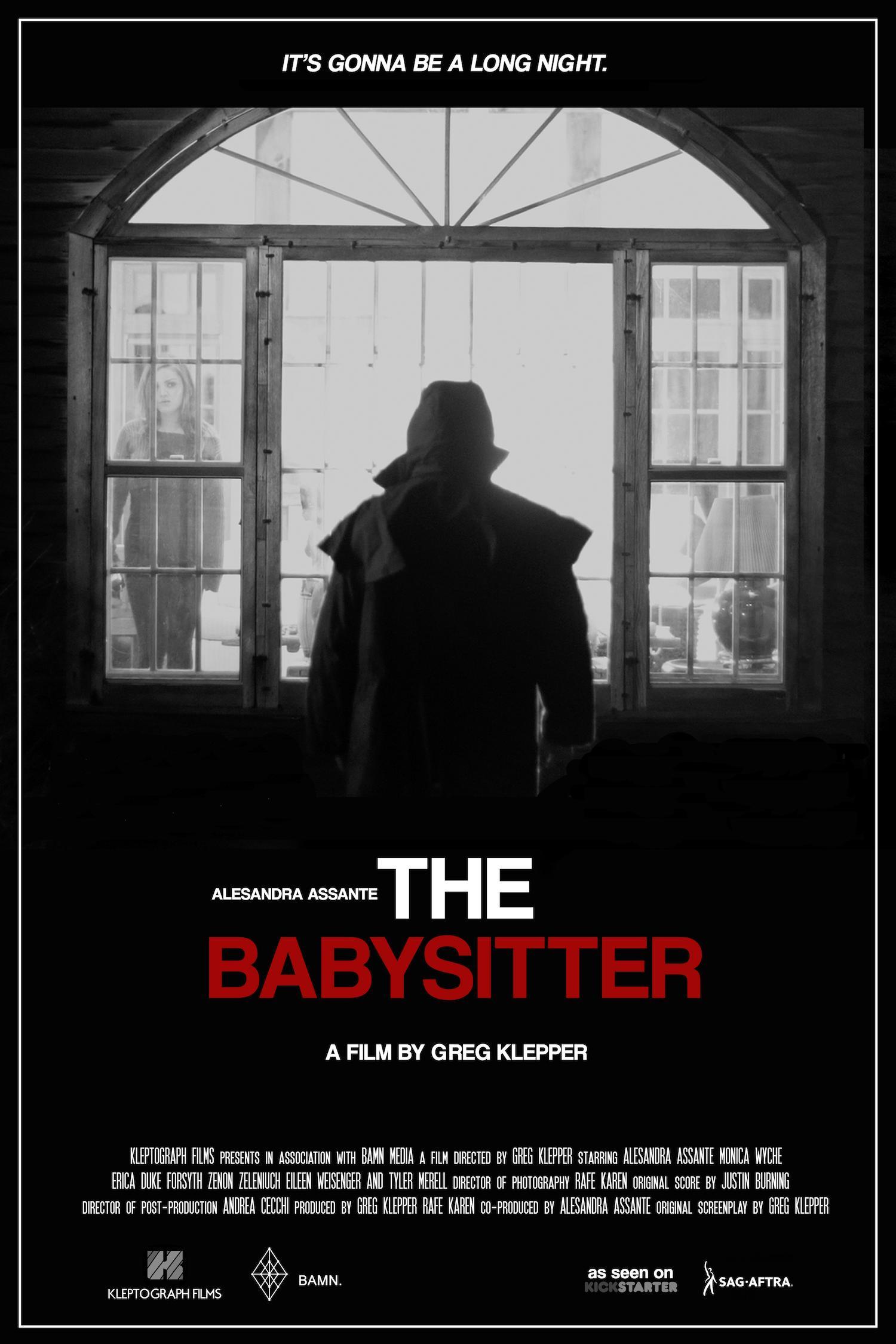 babysitter movie 2017 imdb