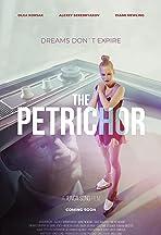 The Petrichor
