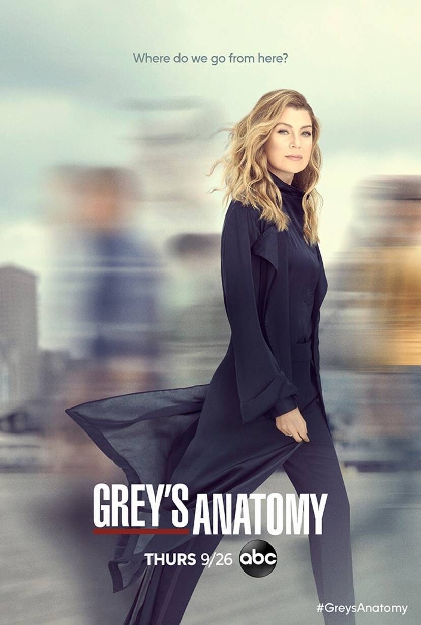 GREY ANATOMIJA (11 sezonas) / GREY ANATOMY