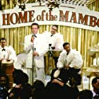 Armand Assante, Scott Cohen, Mario Grillo, Ralph Irizarry, and J.T. Taylor in The Mambo Kings (1992)
