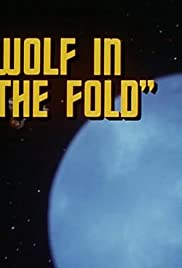 Wolf in the Fold Poster
