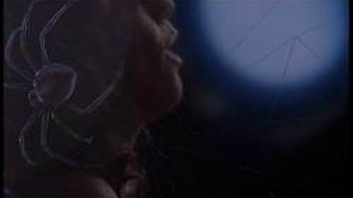 "Music Video: Sarah McLachlan ""Ordinary Miracle"""