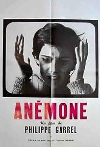 Primary photo for Anémone