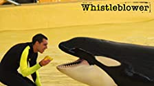 SeaWorld: el caso contra el cautiverio