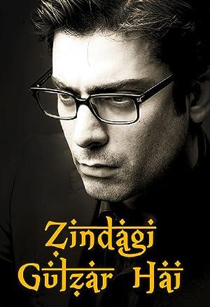 Where to stream Zindagi Gulzar Hai