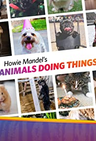 Primary photo for Howie Mandel's Animals Doing Things