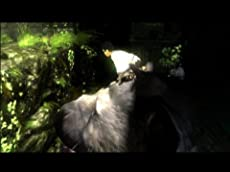 The Last Guardian (VG)