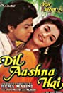 Dil Aashna Hai (...The Heart Knows) (1992) Poster