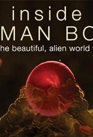 Inside the Human Body (2013) 720p