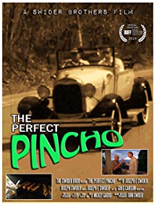 Best sites for watching movies The Perfect Pincho by none [DVDRip]