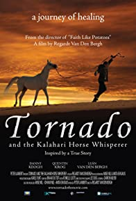 Primary photo for Tornado and the Kalahari Horse Whisperer