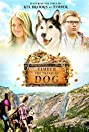 Timber the Treasure Dog (2016) Poster