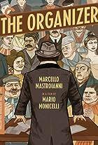 The Organiser