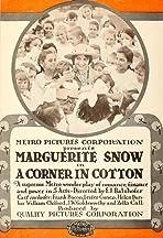 A Corner in Cotton