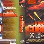 Pat Morita in King Cobra (1999)