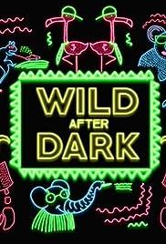 Wild After Dark Poster