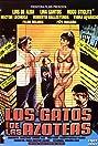 Los gatos de las azoteas (1988) Poster