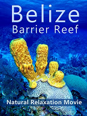 Belize Barrier Reef: Natural Relaxation Movie