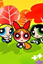 The Powerpuff Girls Rule!!! (2008) Poster