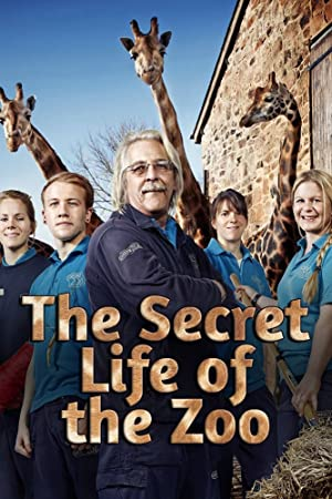 Where to stream The Secret Life of the Zoo