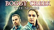 The Witch of Boggy Creek