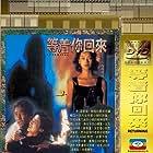 Dang cheuk nei wooi loi (1994)
