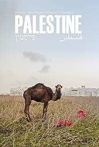 Primary photo for Palestine