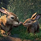 Nicholas Hoult and James McAvoy in Watership Down (2018)