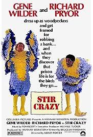 Stir Crazy (1980) filme kostenlos