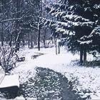 Strannaya zhenshchina (1978)