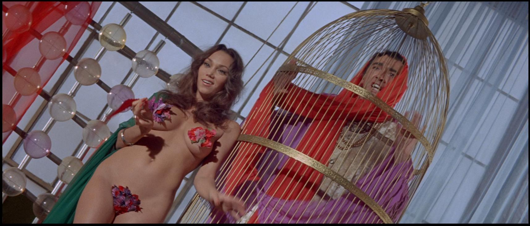 Image result for beyond the valley of the dolls