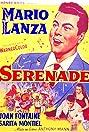 Serenade (1956) Poster