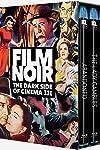Film Noir the Dark Side of Cinema III