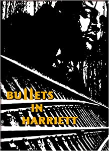 Watching a great movie Bullets in Harriett USA [hdrip]