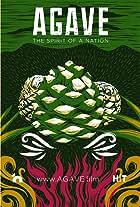 Agave: Spirit of a Nation