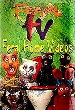 Feral TV