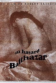 Primary photo for Au Hasard Balthazar
