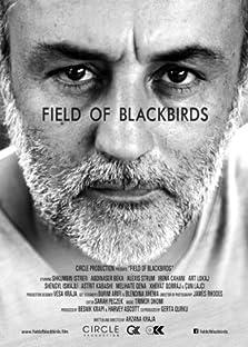 Field of Blackbirds