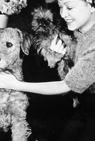 Mädchen für alles (1937)