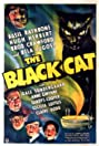 The Black Cat (1941) Poster