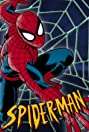 Spider-Man: The Animated Series (1994) Poster