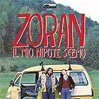 Zoran, il mio nipote scemo (2013)