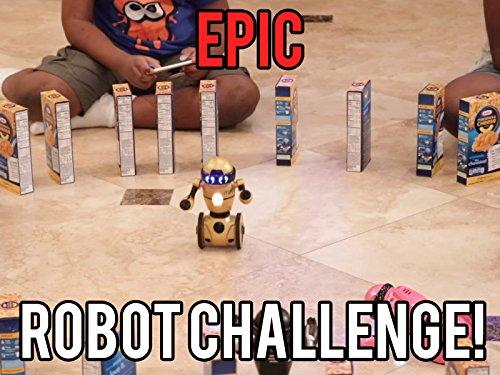 Epic robot challenge