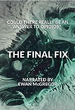 The Final Fix
