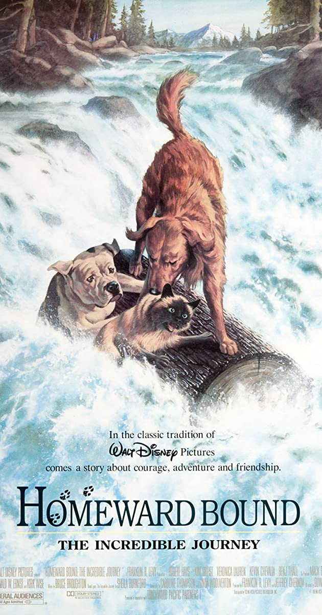 Homeward Bound The Incredible Journey 1993 Imdb
