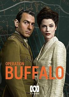 Operation Buffalo (2020– )