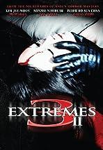 3 Extremes II